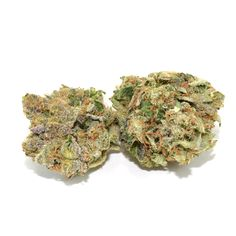 Master Bubba Kush is a popular indica cross created out of two landrace strains from different parts of the Hindu Kush region. Master Kush is bred by the Dutch White Label Seed Company, located in Amsterdam.