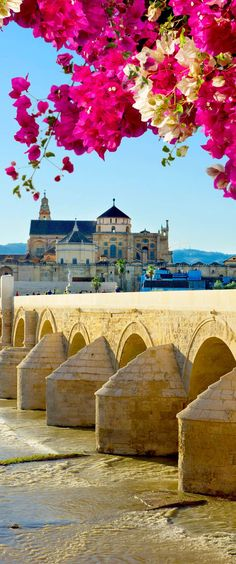 Old cathedral and roman bridge, Cordoba, Andalusia, Spain. Cordoba was the most populous city in the world, and under the rule of Caliph Al Hakam