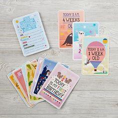 Milestone Baby Cards  | The Land of Nod
