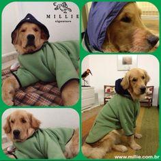 Olha que charme, Manolo e seu Soft Zermatt MILLIE Para aquecer seu Pet: www.millie.com.br