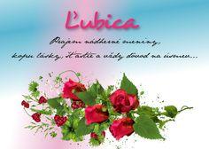 Flower Aesthetic, Birthday Wishes, Flowers, Floral, Royal Icing Flowers, Florals, Flower, Birthday Greetings, Birthday Favors