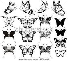 Black and White Butterfly Outline | set of butterflies silhouettes isolated on white background in vector ...