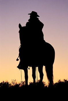 Cowboy On Horse Silhouette   Picture of acowboyon a horse silhouetted against the pre dawn sky near ...