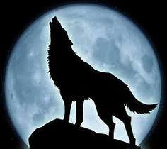 Lobo aullando a la luna llena  1920x1080  LOBOS  Pinterest