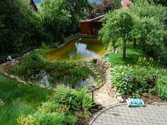 Stunning Schwimmteich und Gartenanlage Garten