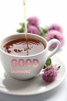Discover the best good morning images that you can share with your loved ones. Everyone begins their day with various routine- it cou.
