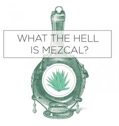 Mezcal Basics: Everything you need to know Mezcal Tequila, Mezcal Cocktails, Cocktail Drinks, Best Tasting Liquor, Distilled Beverage, Whiskey Girl, Wine Dinner, Love Pizza, Love Chocolate
