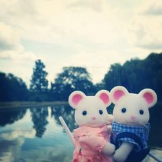 """""""Mr and Mrs Hawthorn out in the park with the family"""" Entry by Miss Sylvanian. #SylvanianSummer #SylvanianFamilies"""