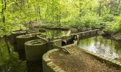 Waterloopbos | Wandeling langs waterwerkmodellen in Marknesse (bij Emmeloord) Places To Travel, Places To See, What To Do Today, Amsterdam, Family Days Out, Hiking Trails, Garden Bridge, Outdoor Activities, Where To Go