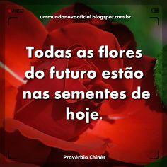Venha conhecer a página Frases & Provérbios no Facebook: https://www.facebook.com/pages/Frases-Prov%C3%A9rbios/1530355663887859