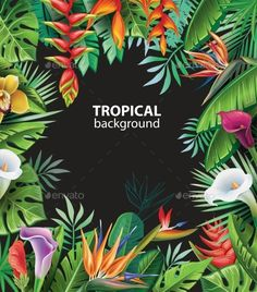 Buy Background with Tropical Plants by on GraphicRiver. Background with tropical plants and flowers Tropical Forest, Tropical Art, Tropical Garden, Tropical Leaves, Tropical Plants, Tropical Flowers, Forest Illustration, Plant Illustration, Jungle Flowers