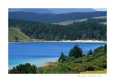 Kai Iwi Lakes - Most beautiful blue lakes I've ever seen