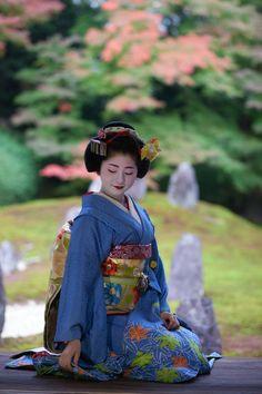 maiko satsuki   japanese culture #kimono