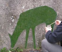 How to Make Moss Graffiti. For the ugly wall on the side of my yard.
