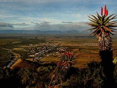 Beerpoort Steytlerville - an interesting town Mountain Pass, Eternal Sunshine, My Land, Home And Away, Live, South Africa, Beautiful Places, Places To Visit, African