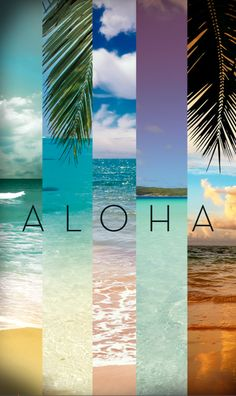 Aloha iphone wallpaper love this Wallpaper Travel, Beach Wallpaper, Wallpaper For Your Phone, Wallpaper Iphone Disney, Cool Wallpaper, Iphone Wallpaper Summer, Tumblr Wallpaper, Phone Backgrounds, Wallpaper Backgrounds