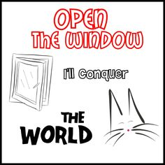 Open The Window   #cats #gatos #gatetes #catslovers #catlover #love #amor #meow #miau