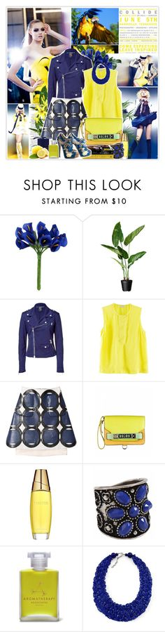 """""""Lindsey Wixson (03/03/2012)"""" by misssophie ❤ liked on Polyvore featuring F, Calla, McQ by Alexander McQueen, H&M, Marni, Proenza Schouler, Estée Lauder, Aromatherapy Associates, Charlotte Olympia and Color craze"""