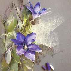 Purple Clematis flowers in pastels Немного бархатной пастели