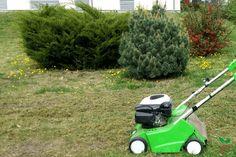 Yard Landscaping, Lawn Mower, Outdoor Power Equipment, Home And Garden, Landscape, Lawn Edger, Scenery, Grass Cutter, Garden Tools