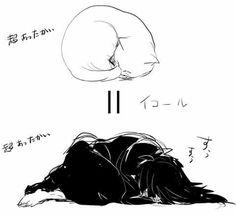 Madara.<Meow-dara. Madara Uchiha, Naruto Sasuke Sakura, Naruto Shippuden Anime, Anime Naruto, Boruto, Madara Wallpapers, Gurren Lagann, Akatsuki, Manga
