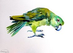 Amazon, original watercolor painting, parrots painting parrot art, green birds