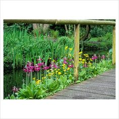 Wood bridges over tranquil ponds.  Love!!!