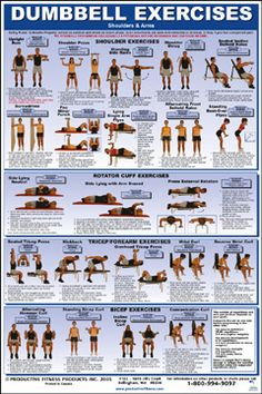 DUMBBELL EXERCISE POSTER- SHOULDERS & ARMS