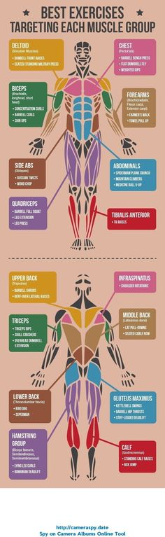 See more here ► ... Tags: quickest way to lose weight without exercise, weight loss pills without exercise, how to lose weight fast without dieting and exercising - CLICK FOR ALL EXERCISES Best Exercises Targeting Each Muscle Group