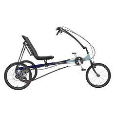 Eco-Delta Recumbent Trike