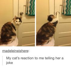 """She's like """"I'm so done with you"""""""