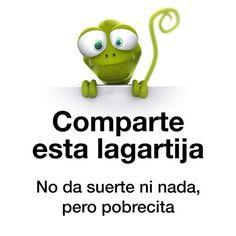 Comparte esta lagartija. #humor #risa #graciosas #chistosas #divertidas