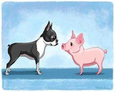 Terrier Mix Boston terrier art, boston terrier art print, boston terrier with pig, pig art print, boston terrier - Boston Terrier Pug, Boston Terrier Kunst, Pitbull Terrier, Terrier Dogs, Boston Terrier Tattoo, Terrier Breeds, Terrier Mix, Raza Pug, Pig Art