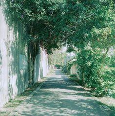 "visualgraphc: "" South of North - Lauri Kerola "" Japan Street, Natsume Yuujinchou, Art Reference Poses, Street Photo, Aesthetic Photo, Nature Wallpaper, Film Photography, Countryside, Beautiful Places"