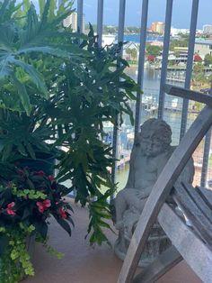 Balcony, Urban, Plants, Balconies, Plant, Planets