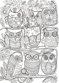Fay Martin - Owls - Another Awesome pin repinned by http://detailedcoloringbooks.blogspot.co.uk/