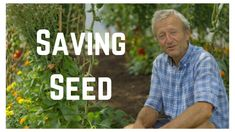 Seed Saving - YouTube #Howtogrowvegetablesinyourowngarden