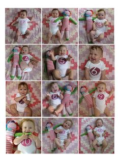 Grow Baby Grow Onesies for each month.