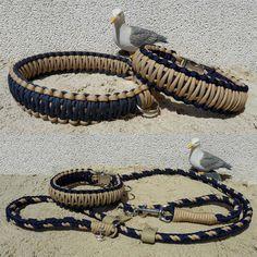 Maritimes Paracord Halsband und Retrieverleine