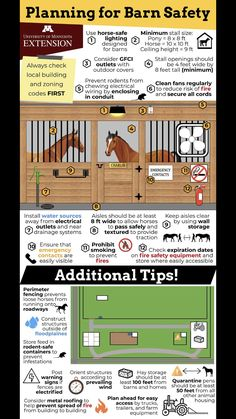 Equestrian Stables, Horse Stables, Horse Farms, Horse Farm Layout, Barn Layout, My Horse, Horses, Small Horse Barns, Horse Barn Designs