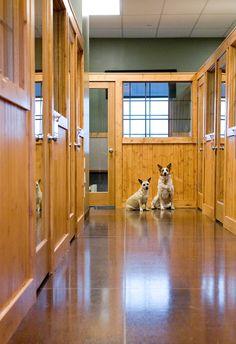Virtual Tour - Dogwoods Lodge