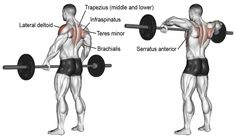16 of the best workouts to turn your shoulders into boulders by approaching the shoulder muscles from every angle for that powerful aesthetic physique