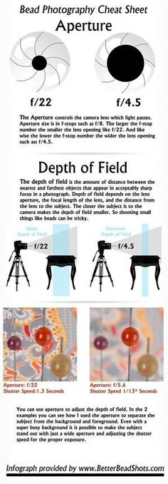 How to control the Aperture and Depth of Field by sarabond7320