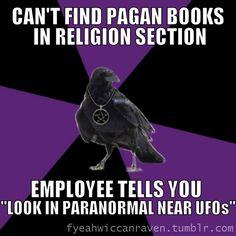 Sounds like my bookstore.