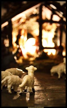 """This reminds me of the Christmas carol, """"Away in a Manger."""""""