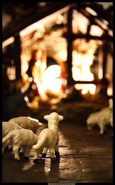 Gone to Bethlehem