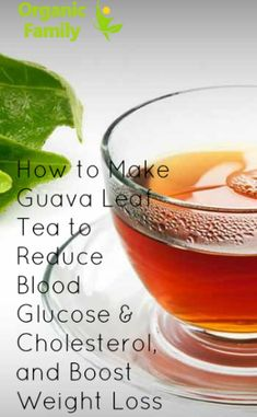 How to Make Guava Leaf Tea to Reduce Blood Glucose & Cholesterol, and Boost Weight Loss - Organic Family Guava Leaf Tea, Guava Leaves, Fat Burning Drinks, Fat Burning Foods, Low Glycemic Vegetables, Easy Weight Loss, Lose Weight, Guava Benefits, Banana Drinks