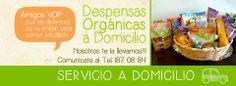 EL 8 BOTTEGA ORGANIC Carretera Federal 200, 1149 Plaza Los Soles, loc. 22, Jarretaderas , 63735 Nayarit https://www.facebook.com/El8BottegaOrganic?fref=ts