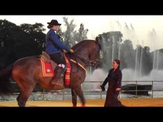 Flamenco al caballo