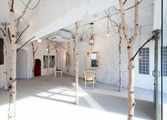 Birch Trees and Antiques Create a Fairytale Woodland in Japan's Onico Beauty Salon
